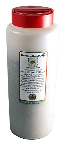 NaturesGoodGuys 12,500 Live Hypoaspis Miles (Predatory Mites) - Guaranteed Live Delivery!