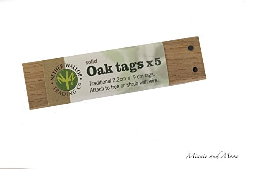 British Reusable Oak Plant Tags (Set of 5) by Nether Wallop Trading