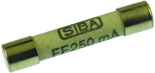 (AMPROBE FP375 Spare Fuse .25A/600V, 4 PER )