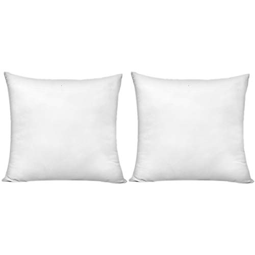 HIPPIH 20 x 20 Inch Pillow Inserts (Set of 2), Decorative Throw Pillow Inserts, Hypoallergenic Square Pillow Form Insert with Zips, Upgraded (Inch 20 Decorative Pillows)