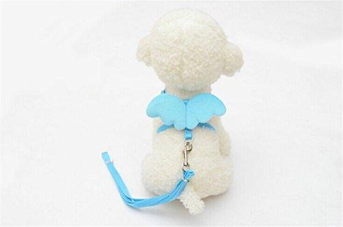 [Adjustable Pet Chain,Hemlock Angel Wing Puppy Dog Suit Collar Cloth (M, Blue)] (Diy Costumes Kids)