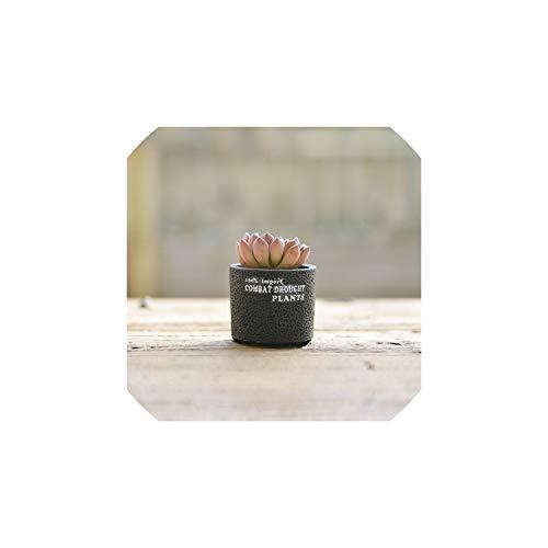 (Cement Concrete Ceramic Planters Set Matt Porcelain Flowerpot Mini Geometric Succulent Plant Pots Flower Pot Bonsai Planters,A)