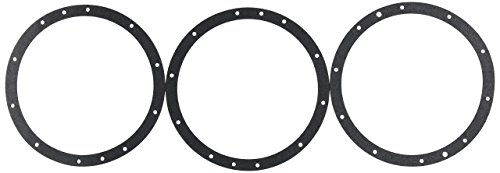 Pentair 79200400 10-Hole Standard Gasket Set without Double Wall Replacement Large Stainless Steel Niches