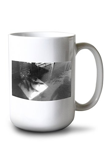- Bonneville Dam, Oregon - Counting Salmon at Fish Ladder (15oz White Ceramic Mug)