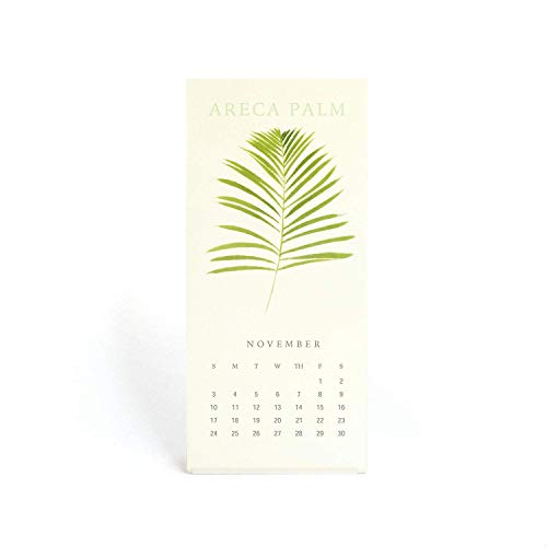 """""""The Silence Of Plants"""" - 2019 Mini Desk/Wall Calendar - 3.5"""" x 7.8"""" - Featuring Botanical Painting in Watercolor - Green Leaf Part Two - New Year and Christmas Gift"""