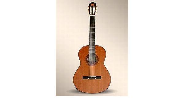 Alhambra guitarra clásica – 4P: Amazon.es: Instrumentos musicales