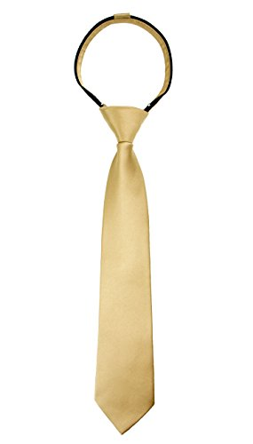 Spring Notion Boys' Satin Zipper Neck Tie Large Antique - Charges Shipping Usps