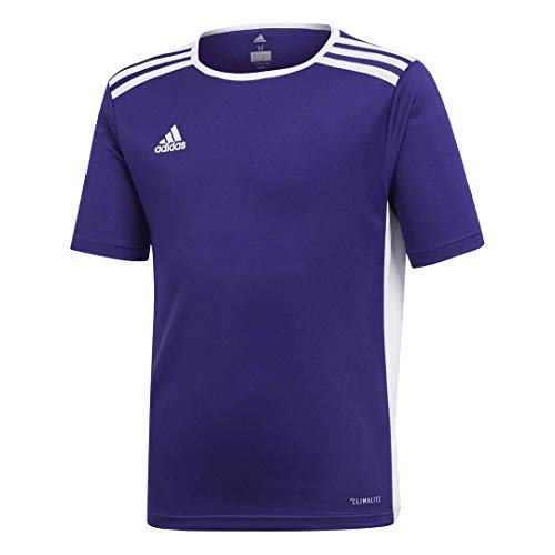 adidas Youth Boys Soccer Entrada 18 Jersey, Core Purple, -