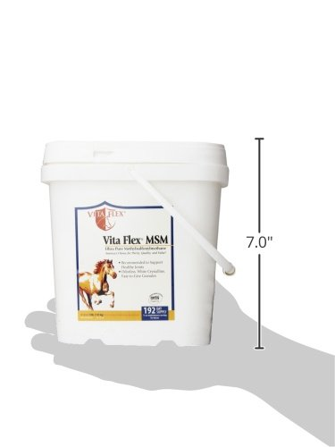 Vita Flex MSM Ultra Pure, Horse Joint Supplement by Vita Flex (Image #7)