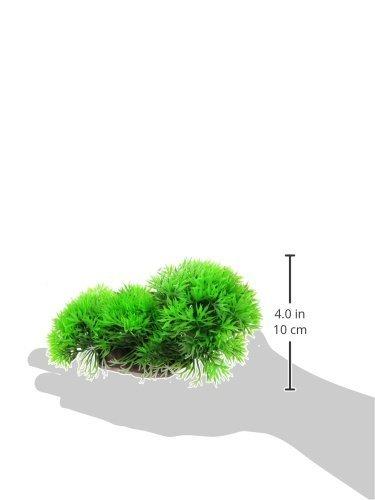 Amazon.com : eDealMax Decoración de la planta Jardin acuario plástico del tanque de pescados flotante Grass, DE 4, 1 pulgadas, Verde : Pet Supplies