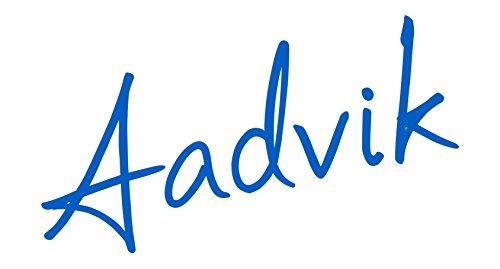 Aadvik Camel Milk Powder 0.7 Oz x 25 servings, 17.5 Oz makes 175 fl oz (Freeze Dried, Gluten free, no additives, no preservatives) by Aadvik (Image #6)