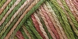 (Caron Bulk Buy Simply Soft Yarn Paints (3-Pack) Rose Garden C9700P-2)