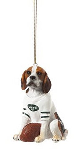New York Jets Beagle Team Dog