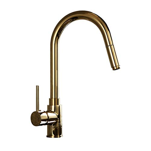 Lovedima Luxurious High-Arc Single Handle 1-Hole Solid Brass Pull-out Spray Kitchen Faucet in Gold (Gold)