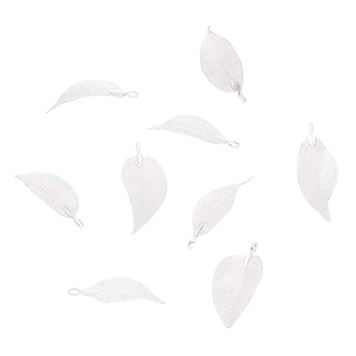 (Panadhall 10pcs Large Hole Natural Real Filigree Leaf Pendants Charms 1.97~3.15x0.79~1.38 Inch with Silver Plated Iron Bail for Necklace Jewelry Making)