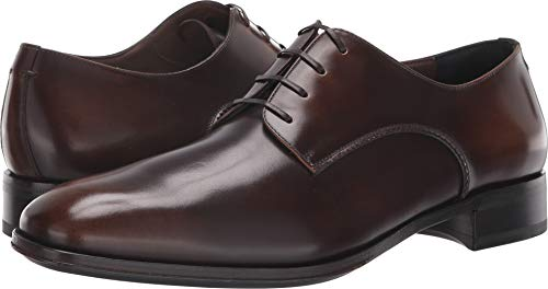 (Salvatore Ferragamo Men's Daniel Oxford Madera 10 E US)