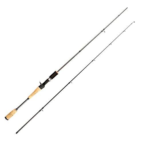 Heavy Custom Graphite Surf Rod - 8