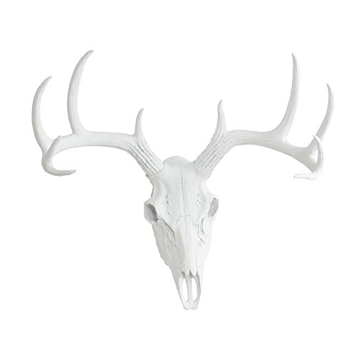 Amazon.com: Wall Charmers Large Faux Deer Skull | Room Decor Wall Art| Hand  Finished Home Decor, Farmhouse Decor, Bedroom Decor, Bathroom Decor, ...