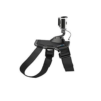 Oficial GoPro arnés para perro trae montaje de cámara: Amazon.es ...