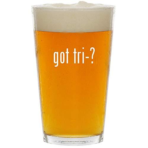 got tri-? - Glass 16oz Beer Pint (Tri Tronics Trashbreaker G3 Exp 6 Dog)