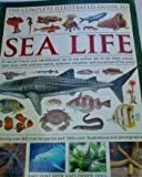 img - for Sea Life (The Complete Illustrated Guide to) by Beer, Amy-jane; Hall, Derek (2008) Paperback book / textbook / text book