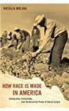 How Race Is Made in America : Immigration, Citizenship, and the Historical Power of Racial Scripts, Molina, Natalia, 0520280075