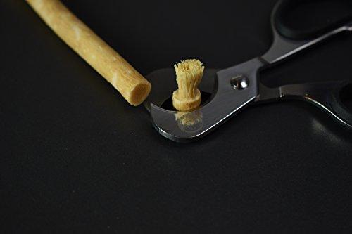 El Cepillo de Dientes Orgánico - VEGANO hecho de Miswak - Blanqueante de dientes natural - Pack de inicio - 2 palos biodegradables, 2 fundas protectoras y ...