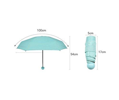 Vinyl Sonnenschutz Tasche Tragbare Hälfte der Regen und Regen Kapseln Regenschirm B xK8uI
