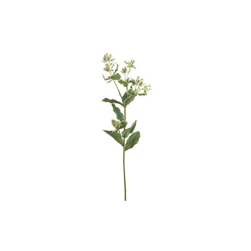 """silk flower arrangements 27"""" silk euphorbia milkweed flower spray -green/variegated (pack of 12)"""