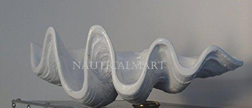 (NAUTICALMART Large White Clam Shell Beautiful Seashell)