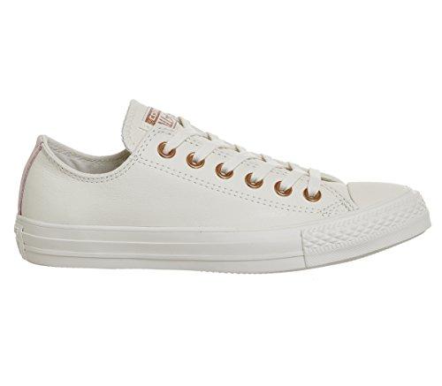 Converse Unisexe Mandrin Adulte Taylor Chaussures De Sport B?uf Multicolores Ctas (aigrette / Blush Or Vapeur Rose 281)
