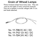 (US) Philmore 11-712 Grain of Wheat Lamps 12V AC/DC (2 lamps per package)