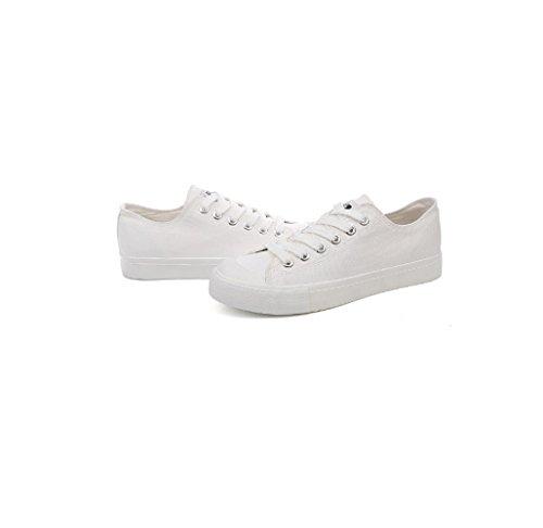 Lona Xwh Fondo Zapatos Mano Pequeños Blanco A Pintado Deportes Blancos Hombres Ocasionales Par De Los Plano RTxUwxf
