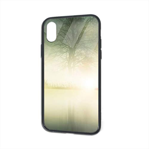 BaiRIhe iPhone X/XS Case, Nature Deer Transparent Glass Mobile Phone Shell, Strong Handset Sheath Shock Protection -