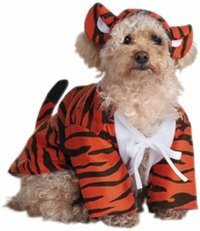 Raja Dog Costume (Pet Raja The Tiger Dog Costume For Small Dogs by Disguise)