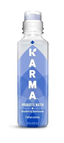 Karma Wellness Flavored Probiotic