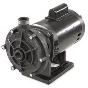 (Hayward 3/4 HP Booster Pump 230/115V )