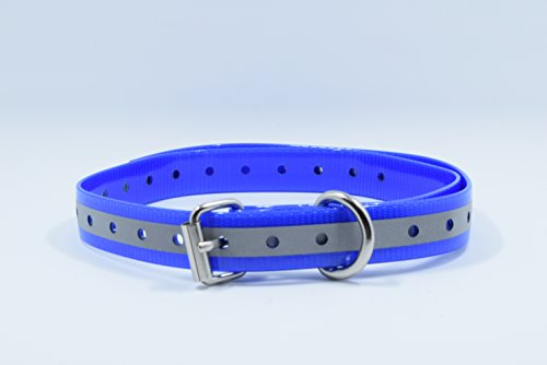 Replacement Dog Training Collar Strap Band Buckle 3/4