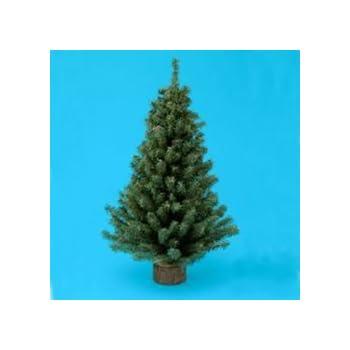 Kurt Adler 24 Miniature Pine Christmas Tree