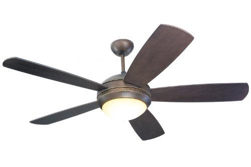 l ceiling fan - 2