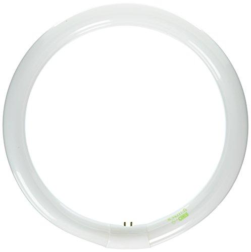Eiko FC12T9/CW Circline T-9 G10Q Base Halogen Bulb, 32W, Cool White