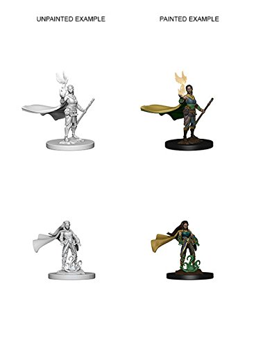 (D&d Nolzur's Marvelous Unpainted Minis: Elf Female Druid)