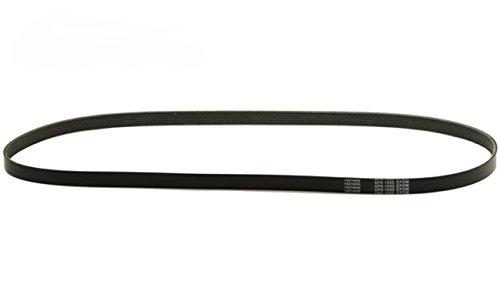 Bapmic 038903137J Serpentine Belt for Volkswagen Golf Bora MK4 Audi A3 1.9TDI