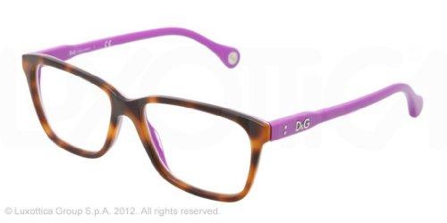D&G Eyeglasses DD 1238 2608 Havana - Sunglasses D&g Eyewear