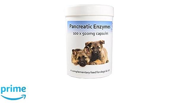 Cápsulas de enzimas pancreáticas x 100 Pancreatic Enzyme ...