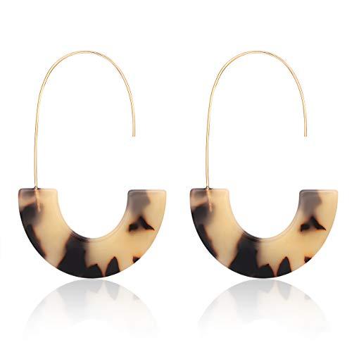 MOLOCH Acrylic Earrings Statement Tortoise Hoop Earrings Resin Wire Drop Dangle Earrings Fashion Jewelry for Women (Leopard) ()