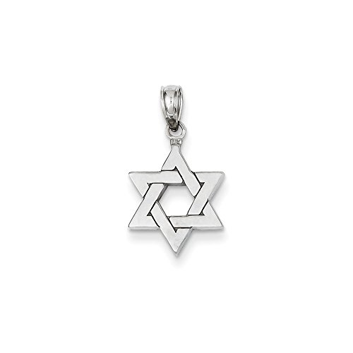 14K White Gold Polished Star of David Pendant
