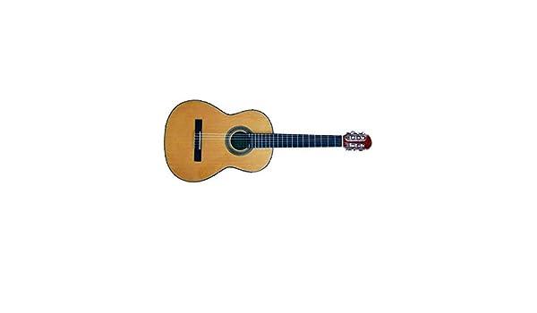 José Torres - Guitarra clásica JT-56: Amazon.es: Instrumentos ...