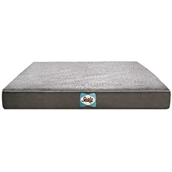 Amazon Com Sealy Dog Bed Sherpa Orthopedic Dog Bed