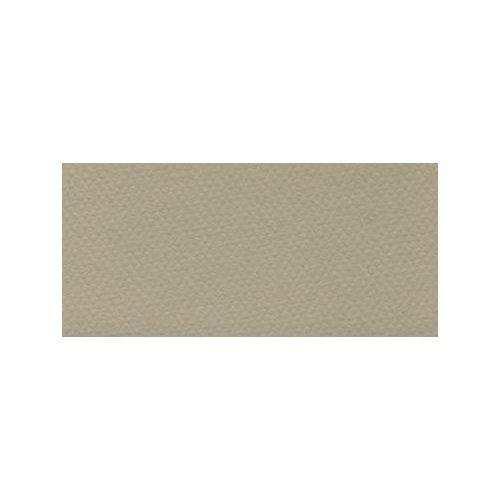 Mi-Teintes Paper - Pearl (343) - 19